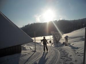 Skilanglaufen
